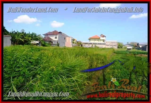 Beautiful PROPERTY 770 m2 LAND IN CANGGU BALI FOR SALE TJCG148