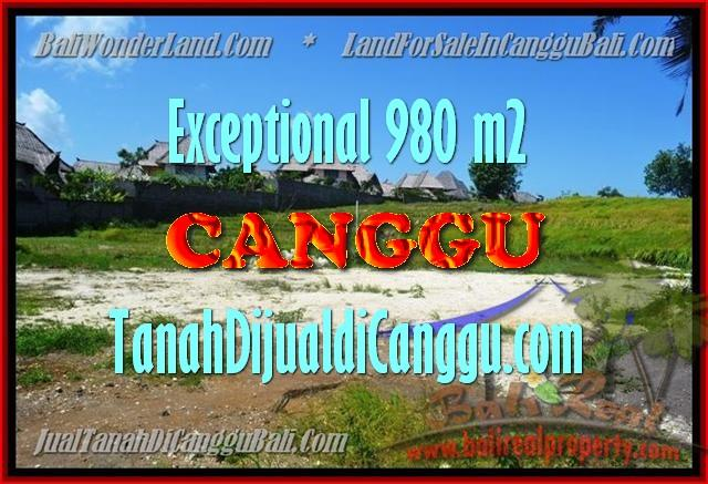 Affordable PROPERTY 980 m2 LAND SALE IN CANGGU TJCG152