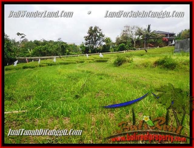 FOR SALE Magnificent PROPERTY 1.000 m2 LAND IN CANGGU TJCG161