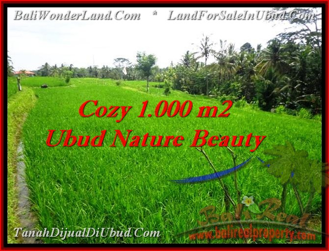 Affordable PROPERTY Ubud Tegalalang BALI LAND FOR SALE TJUB478