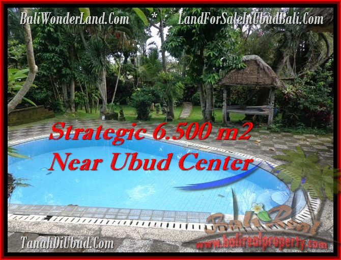 FOR SALE Magnificent PROPERTY LAND IN Ubud Tegalalang BALI TJUB479