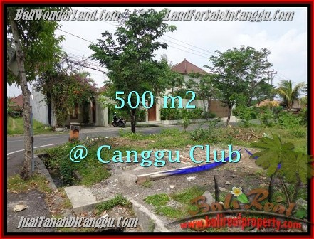 Affordable Canggu Brawa BALI 500 m2 LAND FOR SALE TJCG176