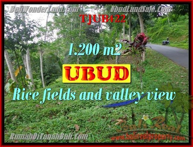 FOR SALE Affordable LAND IN Ubud Tegalalang TJUB422