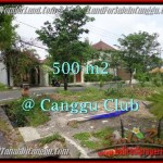 Exotic 500 m2 LAND FOR SALE IN CANGGU TJCG176