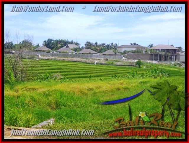 Beautiful PROPERTY Canggu Cemagi 1.450 m2 LAND FOR SALE TJCG137