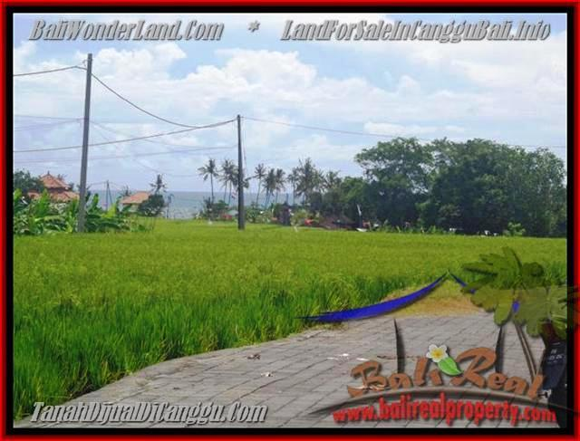 Affordable PROPERTY 560 m2 LAND SALE IN CANGGU TJCG138
