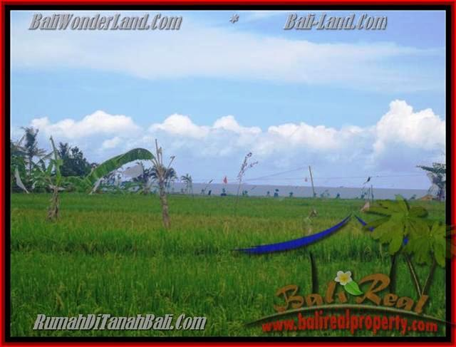 Exotic PROPERTY Canggu Cemagi BALI LAND FOR SALE TJCG140