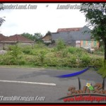 FOR SALE Exotic PROPERTY 500 m2 LAND IN CANGGU TJCG176