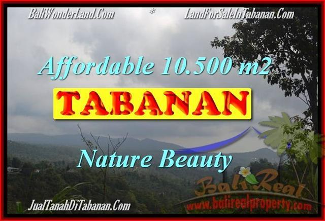 Affordable 10,500 m2 LAND SALE IN TABANAN TJTB165