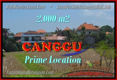 FOR SALE Exotic PROPERTY 2.000 m2 LAND IN CANGGU TJCG167