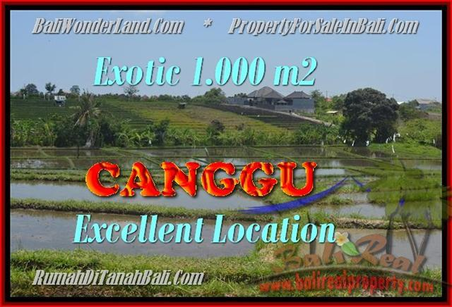 Affordable PROPERTY 1.000 m2 LAND SALE IN CANGGU TJCG168