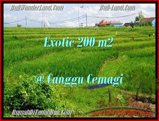 Exotic 200 m2 LAND FOR SALE IN CANGGU TJCG170