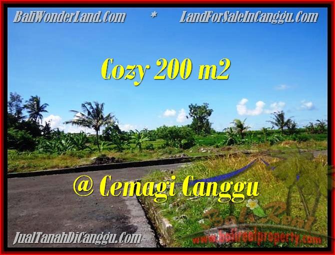 Beautiful CANGGU 200 m2 LAND FOR SALE TJCG171