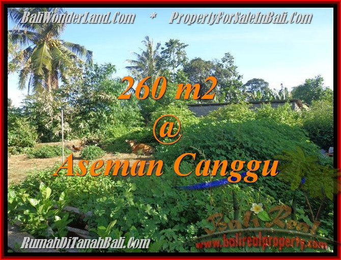FOR SALE Exotic PROPERTY 260 m2 LAND IN CANGGU TJCG174