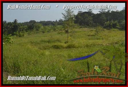 Beautiful PROPERTY 500 m2 LAND SALE IN Canggu Batu Bolong TJCG179