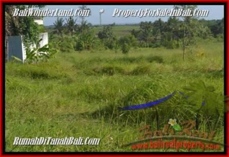 FOR SALE Affordable PROPERTY 500 m2 LAND IN CANGGU BALI TJCG179