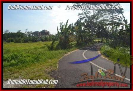 Affordable Canggu Batu Bolong BALI LAND FOR SALE TJCG179