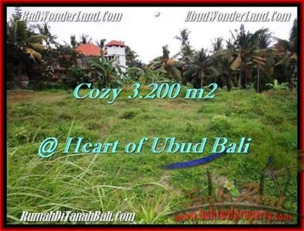 Beautiful 3,200 m2 LAND IN UBUD BALI FOR SALE TJUB510