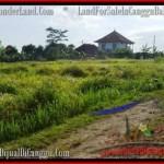 Beautiful PROPERTY 1,000 m2 LAND IN CANGGU BALI FOR SALE TJCG178