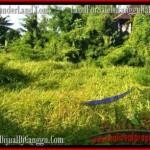 Exotic LAND SALE IN Canggu Batu Bolong TJCG178