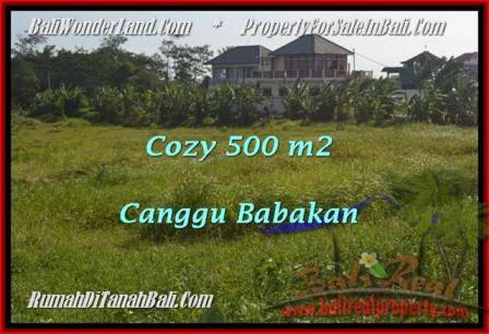 Magnificent PROPERTY 500 m2 LAND FOR SALE IN CANGGU BALI TJCG179