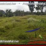 Affordable Canggu Batu Bolong LAND FOR SALE TJCG179