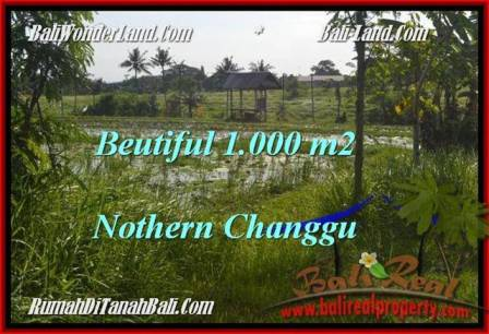 Magnificent PROPERTY 1,000 m2 LAND FOR SALE IN CANGGU BALI TJCG180