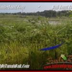 LAND IN Canggu Batu Bolong FOR SALE TJCG180