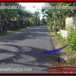 FOR SALE Magnificent LAND IN Canggu Pererenan TJCG181