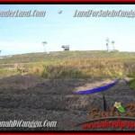 Affordable PROPERTY LAND IN Canggu Pererenan BALI FOR SALE TJCG181