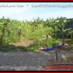 Magnificent PROPERTY LAND SALE IN Canggu Pererenan BALI TJCG182