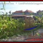 Affordable 250 m2 LAND FOR SALE IN CANGGU TJCG182