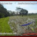 FOR SALE Beautiful PROPERTY LAND IN Canggu Pererenan BALI TJCG183