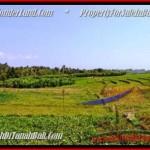 FOR SALE Beautiful PROPERTY LAND IN Canggu Pererenan BALI TJCG184