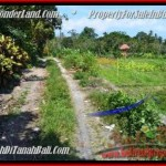 Affordable 1,000 m2 LAND FOR SALE IN CANGGU TJCG184