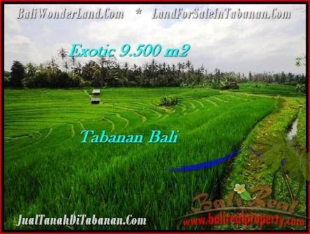 FOR SALE Affordable PROPERTY LAND IN Tabanan Selemadeg BALI TJTB210