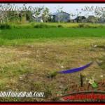 Beautiful LAND FOR SALE IN Canggu Brawa BALI TJCG185