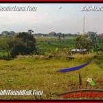 Magnificent PROPERTY LAND SALE IN Canggu Brawa BALI TJCG185