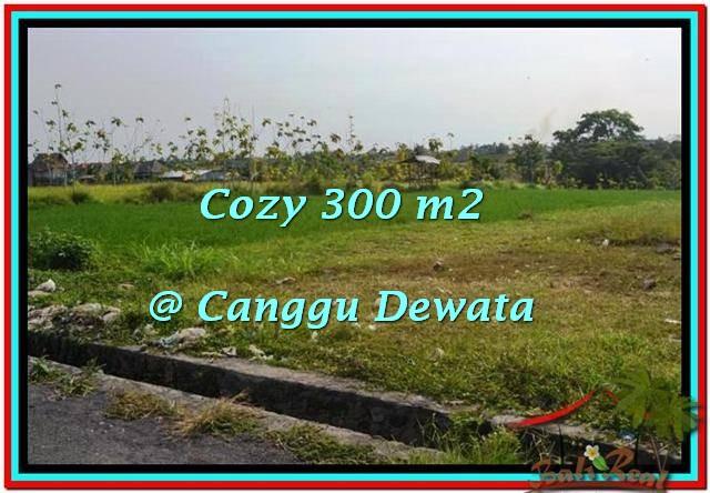 Magnificent LAND FOR SALE IN Canggu Brawa BALI TJCG185