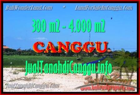 FOR SALE Beautiful 300 m2 LAND IN CANGGU TJCG151