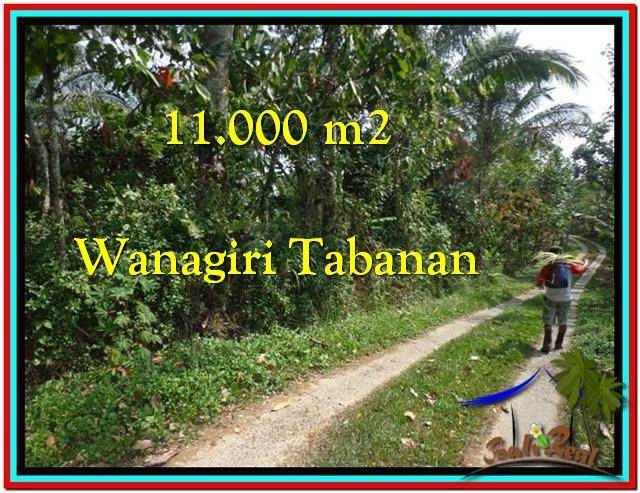 TABANAN 11.000 m2 LAND FOR SALE TJTB213