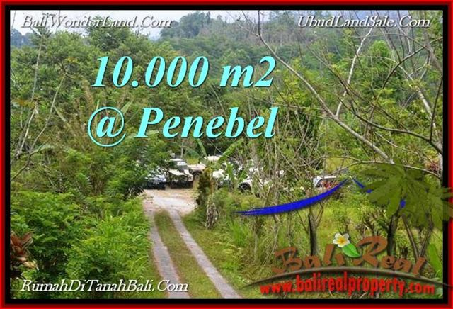 FOR SALE Magnificent PROPERTY 10,000 m2 LAND IN TABANAN BALI TJTB214