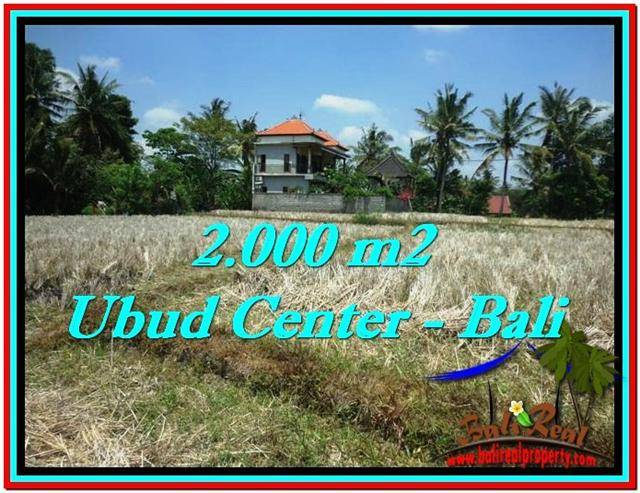 Beautiful UBUD BALI 2,000 m2 LAND FOR SALE TJUB524