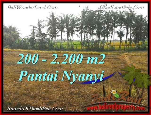 Magnificent PROPERTY LAND IN TABANAN FOR SALE TJTB224
