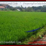 Magnificent CANGGU 300 m2 LAND FOR SALE TJCG186