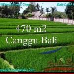 Affordable PROPERTY LAND IN Canggu Pererenan BALI FOR SALE TJCG187