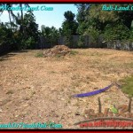Exotic 470 m2 LAND IN CANGGU FOR SALE TJCG187
