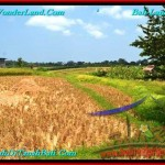 FOR SALE Affordable PROPERTY 400 m2 LAND IN CANGGU TJCG188