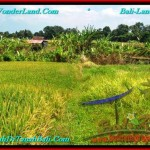 Exotic 400 m2 LAND IN CANGGU FOR SALE TJCG188