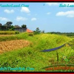 Beautiful 400 m2 LAND SALE IN CANGGU TJCG188